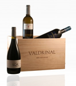 Vinos premiados de Great Wines From Spain