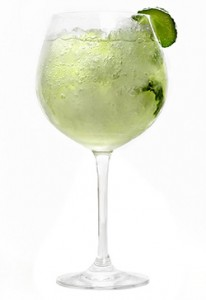 Gin Tónic Perfecto de Gin Blo