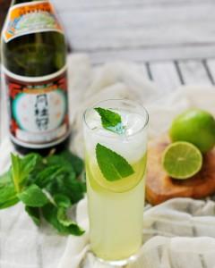 Cocktail Mojito Sake