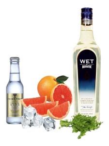 Gin Tonic perfeto de beefeater Wet Gin