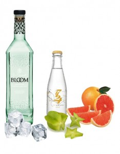 Gin Tonic perfecto de Bloom Premium Gin