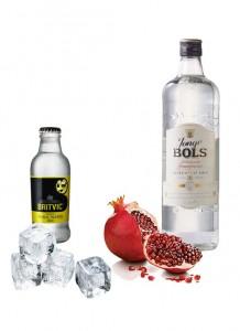 Gin Tonic perfecto de Bols Jonge Genever