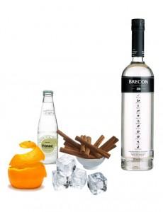 Gin Tonic perfecto de Brecon Gin