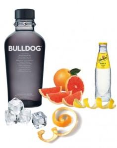 Gin Tonic Perfecto de Bolldog Gin