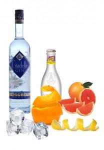 Gin Tonic Perfecto de Citallelle Gin v.2