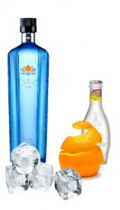 Gin Tonic perfecto de Goa Gin