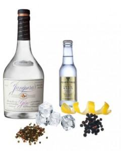 Gin Tonic perfecto de Junipero Gin