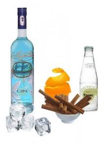 Gin Tonic perfecto de Magellan Gin