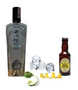 Gin Tonic perfecto de 209 Gin