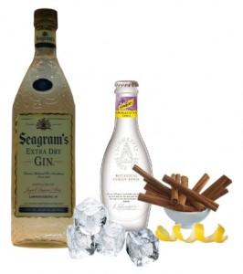 Gin Tonic Perfecto de Seagram's Gin