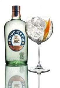 Gin & Tonic 'perfect serve' de Plymouth Gin