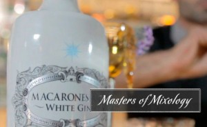 Masters of Mixology by Macaronesian Gin