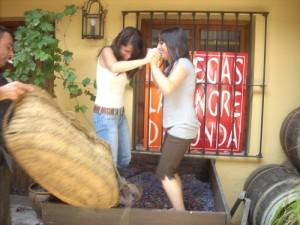 'Pisa de uvas' en Bodegas La Sangre de Ronda